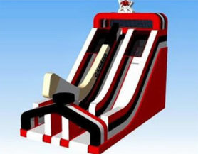 Large inflatable double slide play area